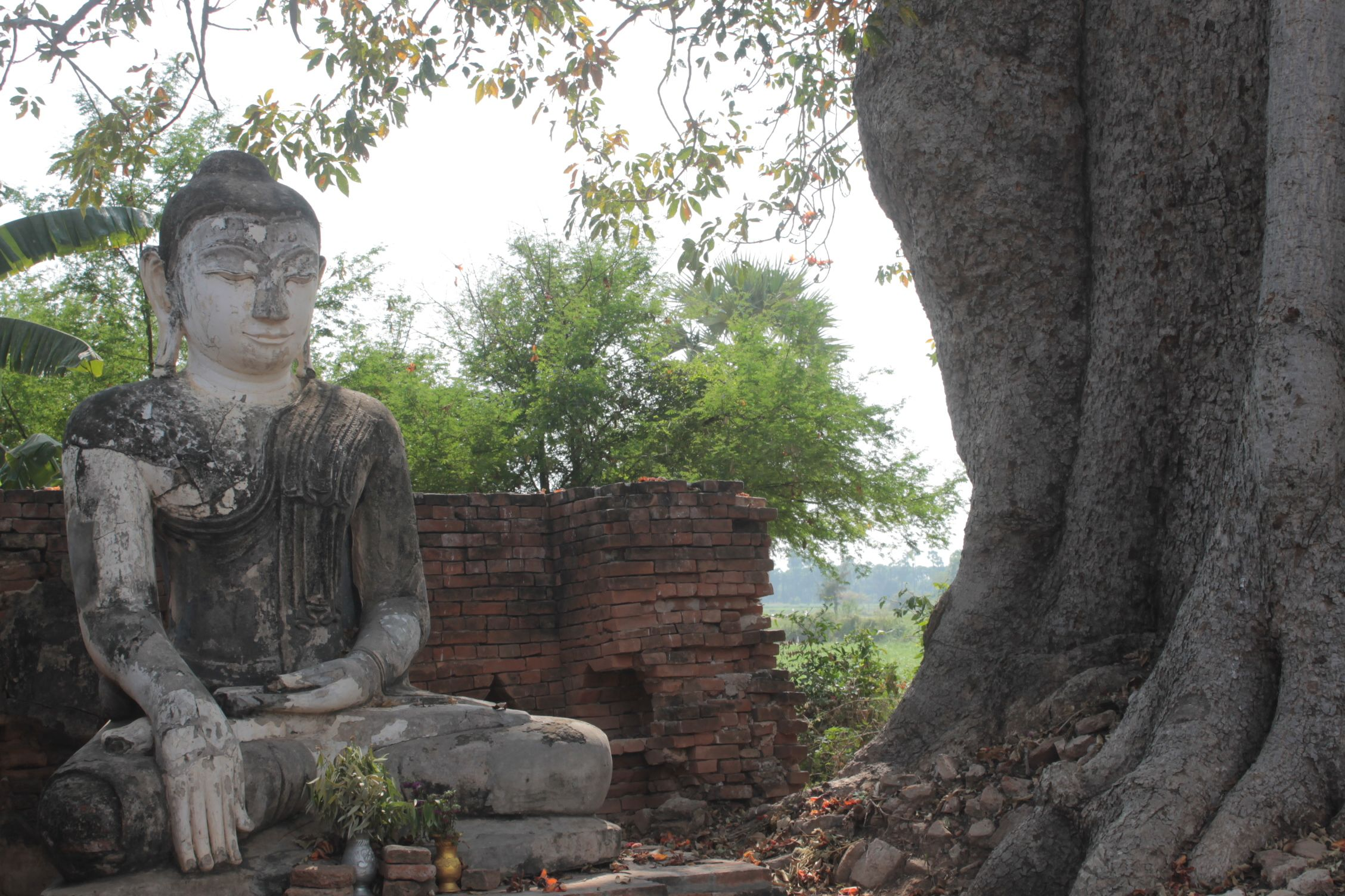 Buda en Inn Wa