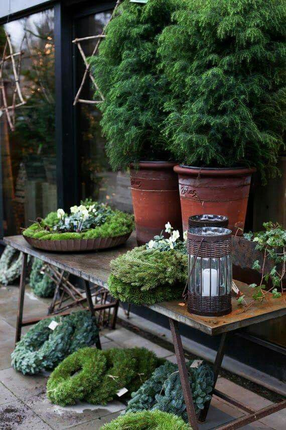 holiday greens | Trending in Home Decor | Pinterest | Holidays ...