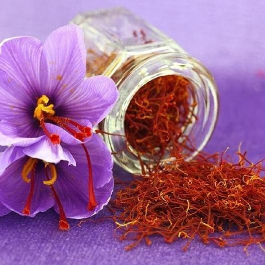 Saffron Crocus Sativus Bulbs | Buy Saffron Crocus Bulbs in ...