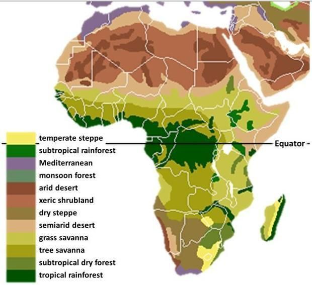 The Main Biomes In Africa Drawn By Hand Using Maps