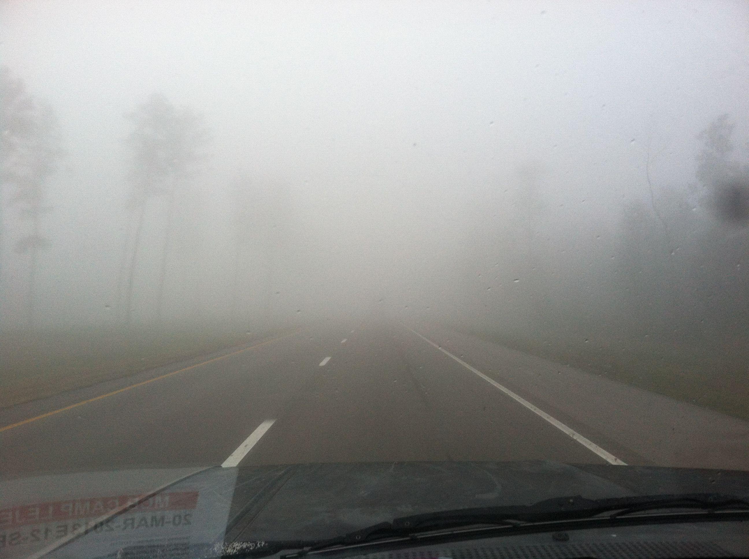 Fog in Mississippi