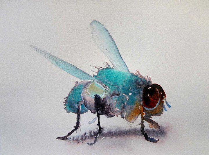 Watercolor by Carol Carter