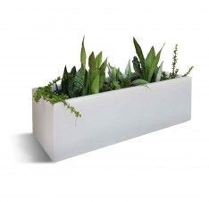 Contemporary Planter Boxes With Modern Rectangle White Cement