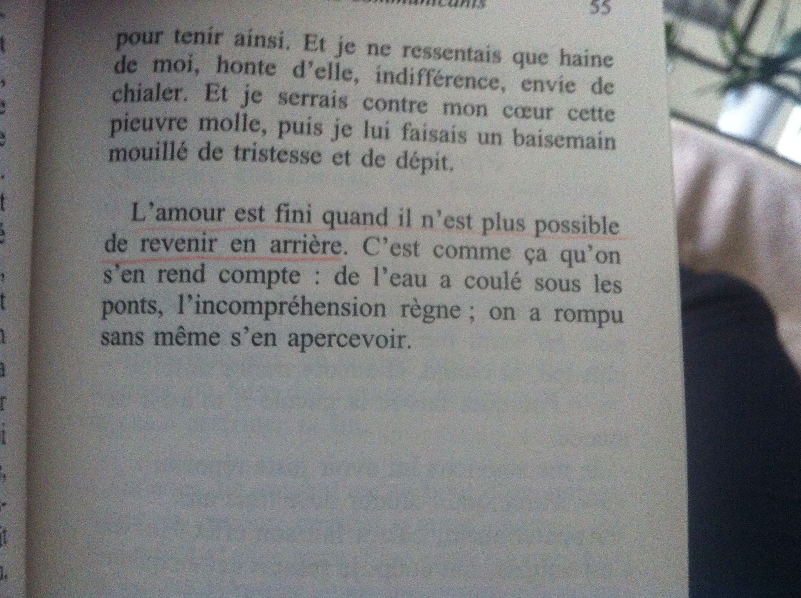 L Amour Dure Trois Ans Quotes Citation Jolis Mots Et Amour
