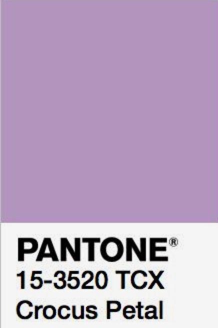 Crocus petal   Color trends fall 2018 in 2019   Pink ...