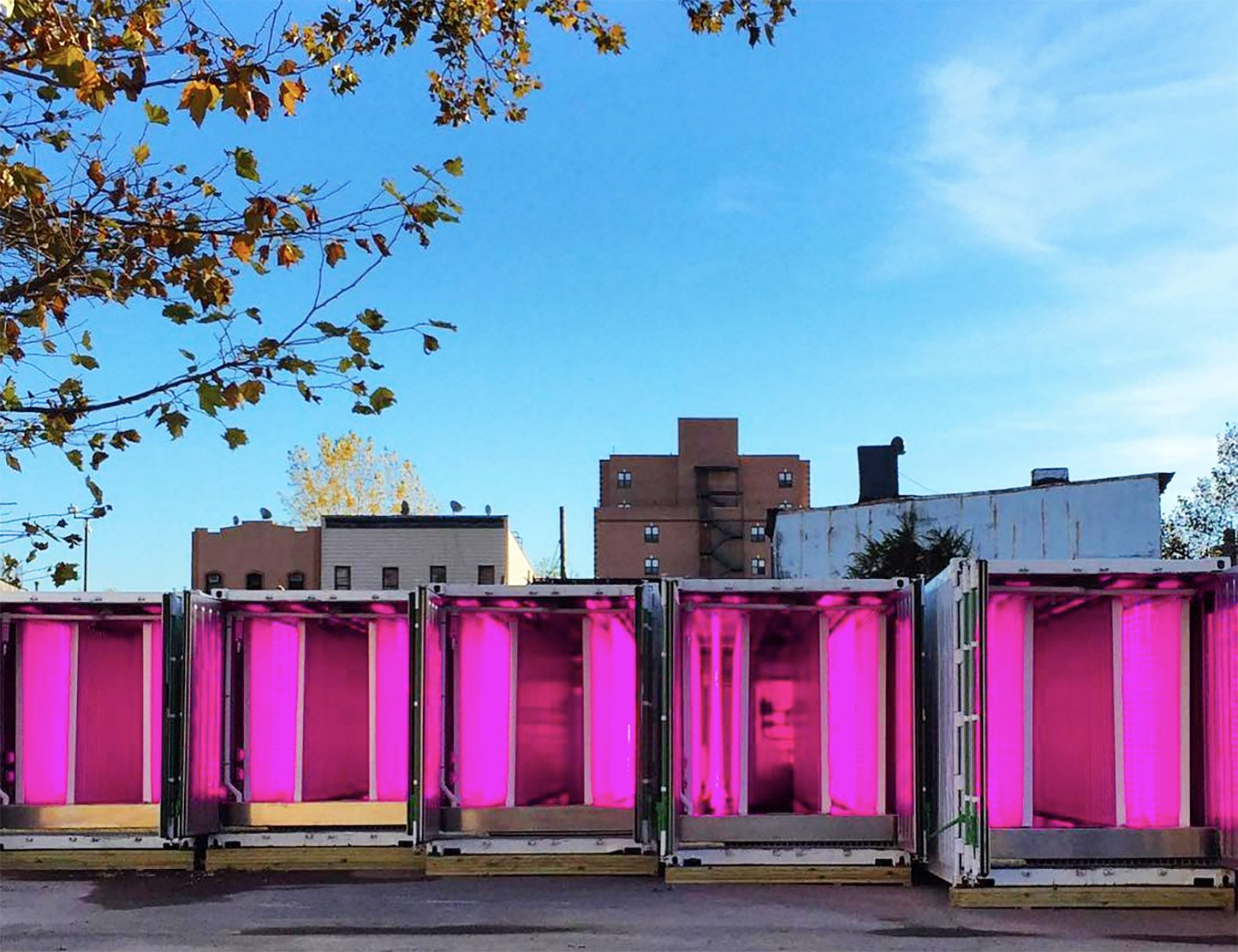 Kimbal Musk Launches A Revolutionary Shipping Container Farm Initiative In Brooklyn Urban Farming Urban Farmer Vertical Farming
