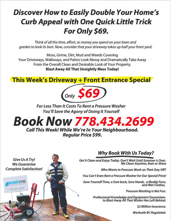 powerwashing flyers took business from  0 to  13 202 per