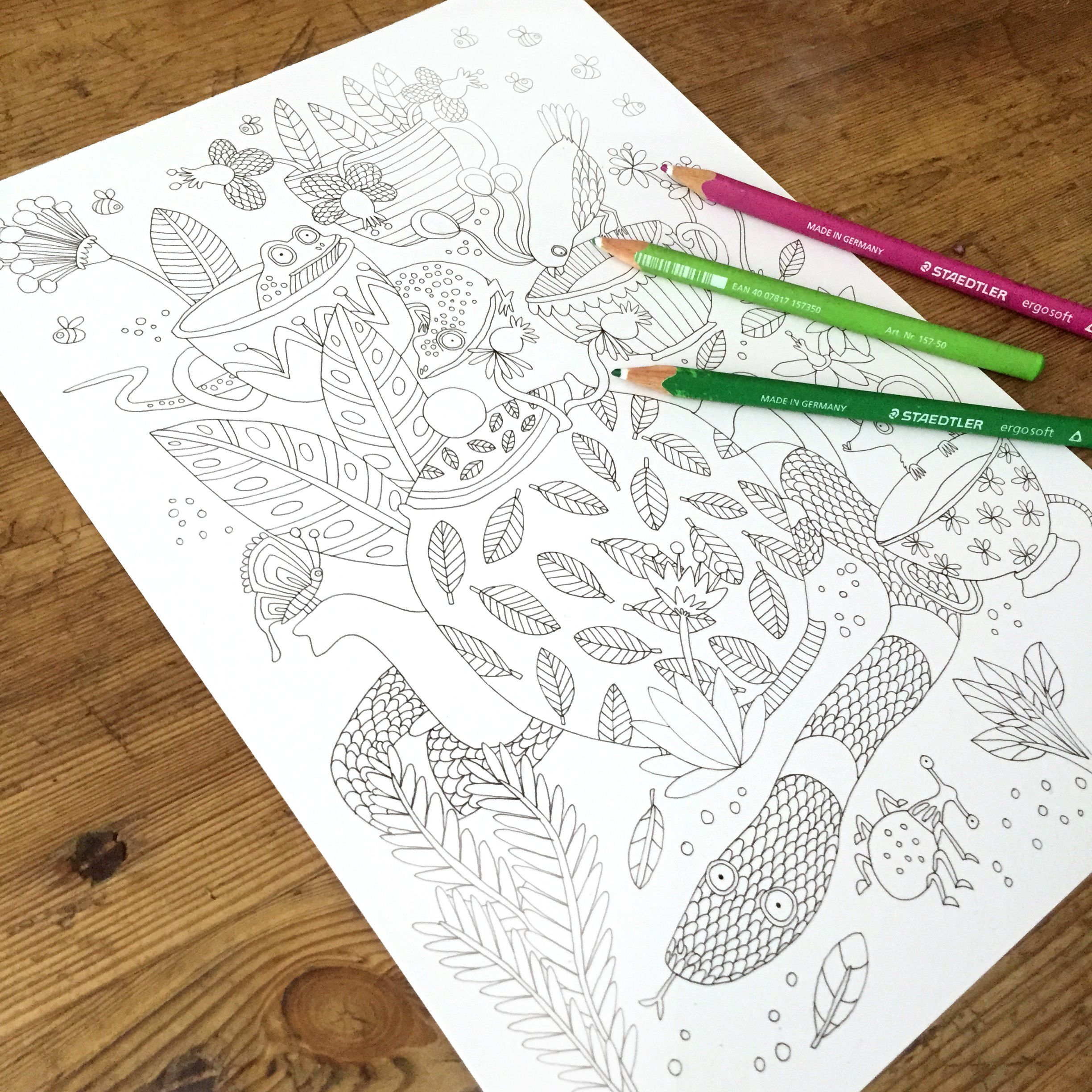 Free downloadable colouring sheet - colour in for a chance to win a Jungle Paradise colouring book and some Clipper Tea!   https://www.clipper-teas.com/the-green-room/tea-love/clipper-tea-break-lorna/