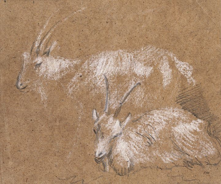 Studies of Goats, late 1780s, Thomas Gainsborough, drawn in black chalk, heightened with white, on buff laid paper, England