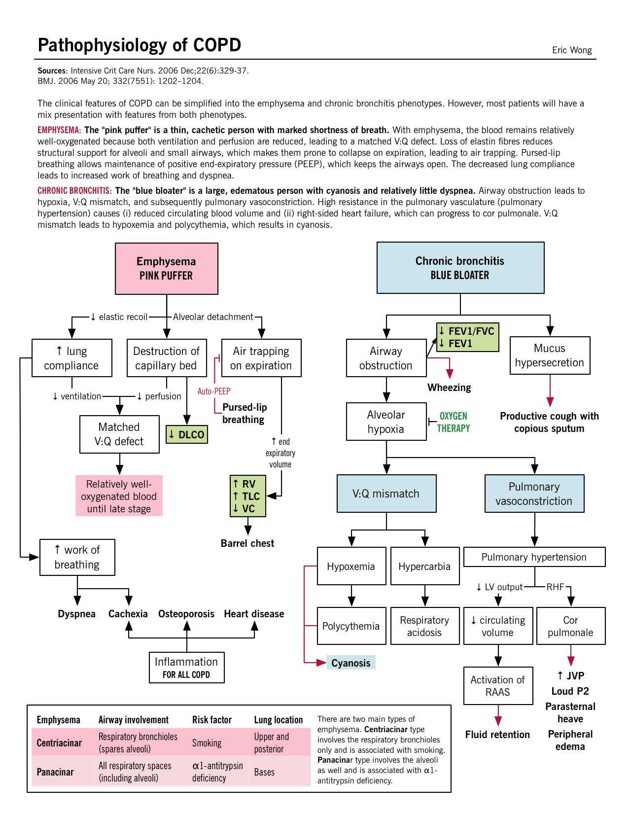 Pathophysiology of COPD | Copd nursing, Pathophysiology ...