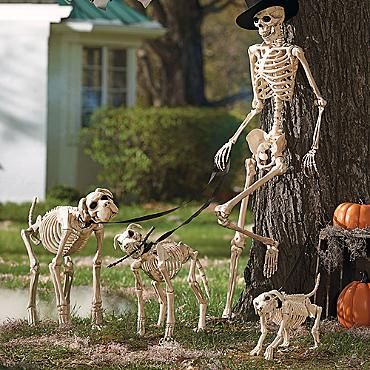 Shadow the Skeleton Dog on Leash ~ This site is all about Halloween - yard decorations for halloween