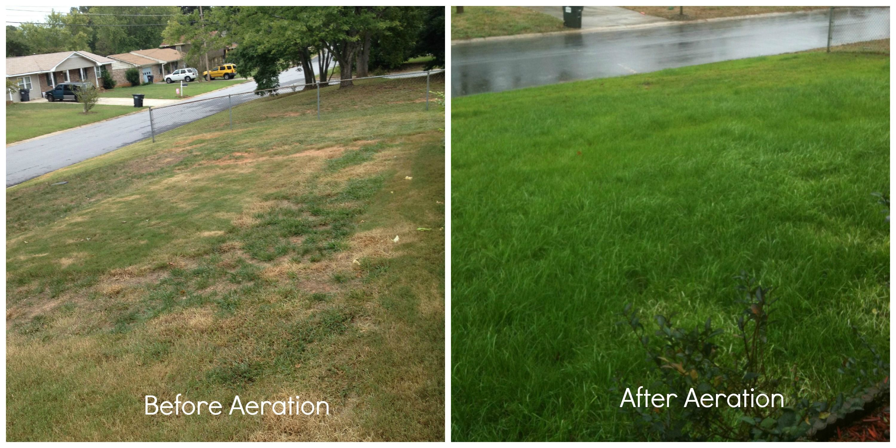 Aerating Your Lawn Is Important For The Roots To Be Strong And