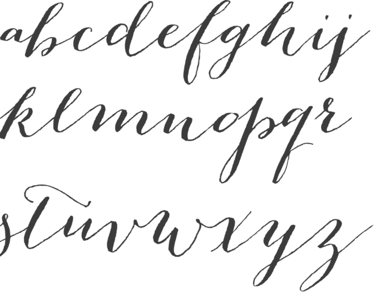 How to use Calligraphy Fonts | Calligraphy fonts, Chloe and Fonts