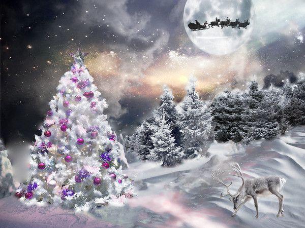Fond D écran Vacances De Noël: Noel, Fond Ecran Noel Et