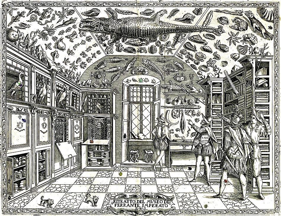 Ferrante Imperato, Dell' Historia Naturale, Naples, 1599.