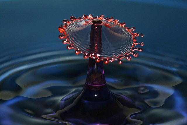 water drop photographs