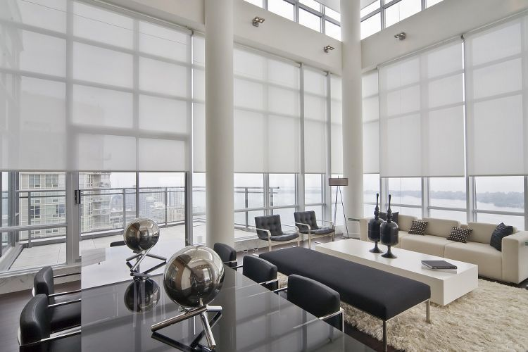 Roller Shades Roller Shades Blackout Shades Black Out Shades Contemporary Rolle Window Treatments Living Room Living Room Windows Modern Window Treatments