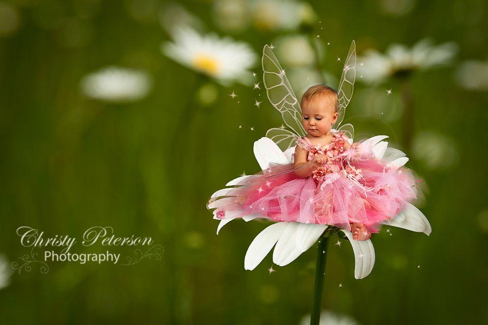 Baby Fairy On Daisy Digital Background For Photographers