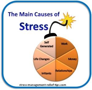 the different causes of stress in high school Stress is the body's natural response to challenges when a student experiences high levels of stress or chronic stress, regardless of her age or grade, it can interfere with her ability to learn, memorize, and earn good grades -- as well as lead to poor physical, emotional and mental health.