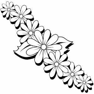 Daisies Coloring Sheet Flower Coloring Pages Bird Coloring Pages Flower Drawing