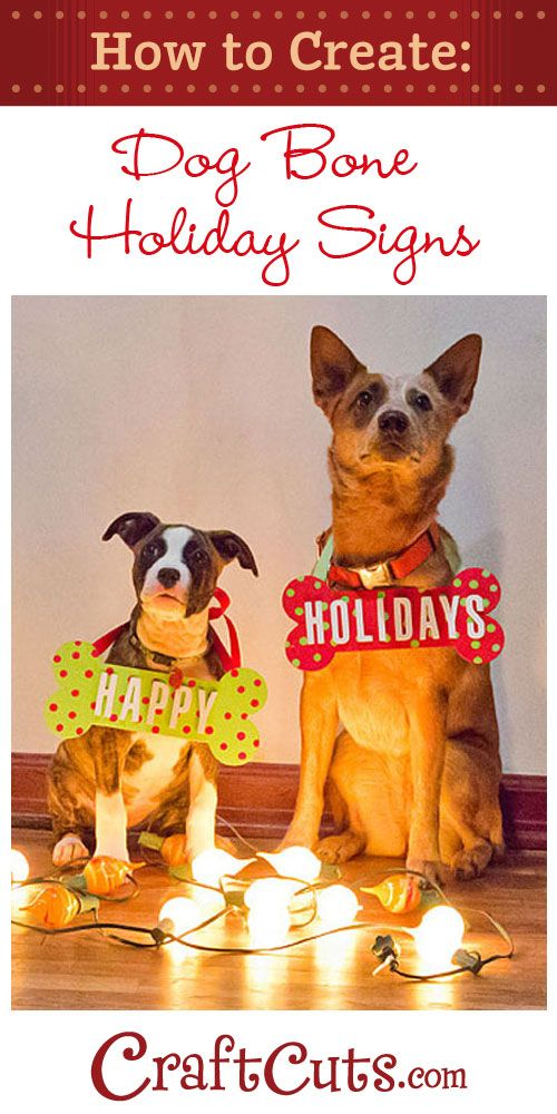 How to Make Christmas Dog Bone Photo Props | ANIMAL RESCUE TIPS ...