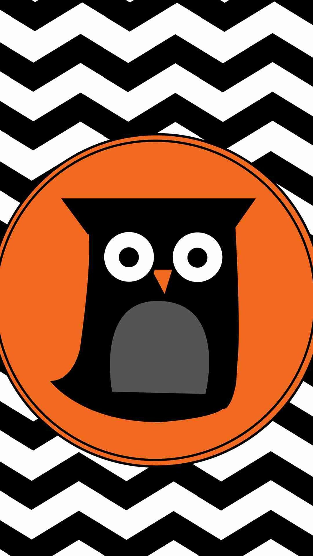 Cartoon Owl and Chevron Pattern iPhone 6 Plus Wallpaper