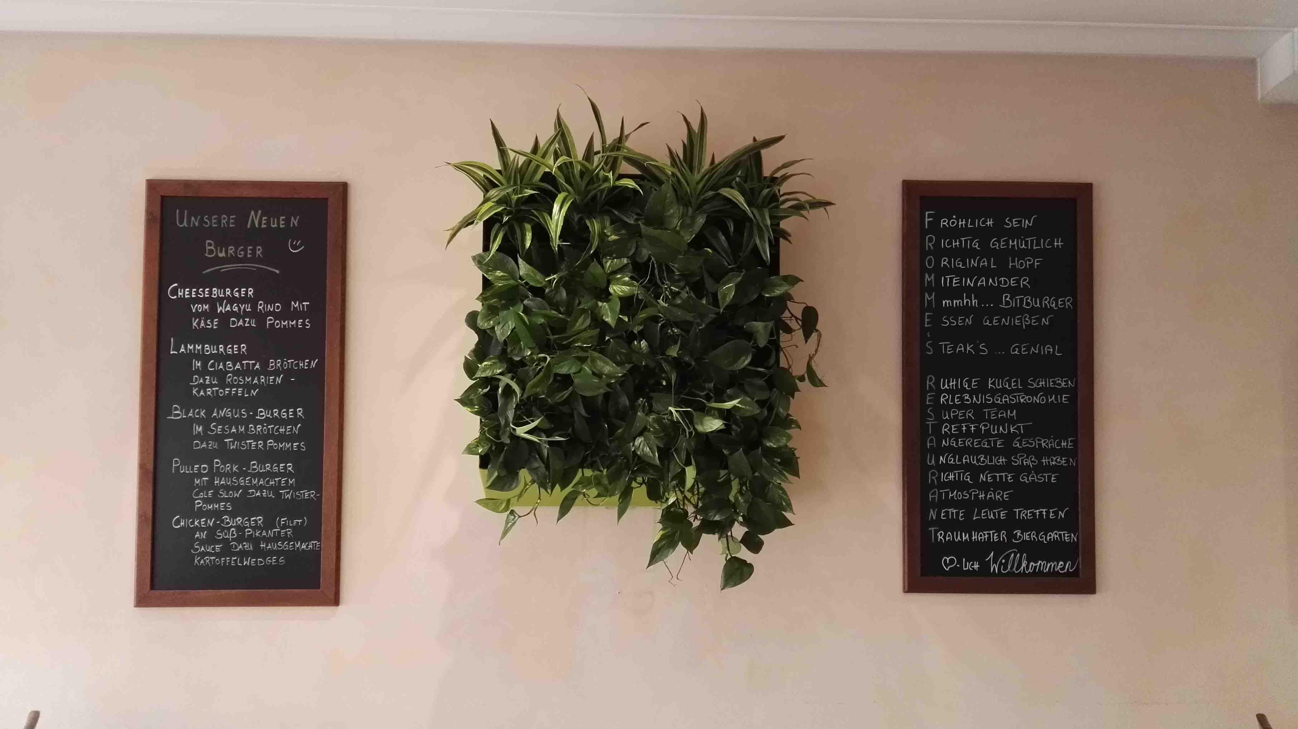 Wandbegrünung die grüne wand begrünung in der gastronomie die grüne wand
