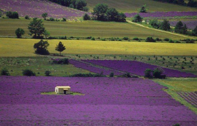 Lugares mais lindos do mundo: Provence, França