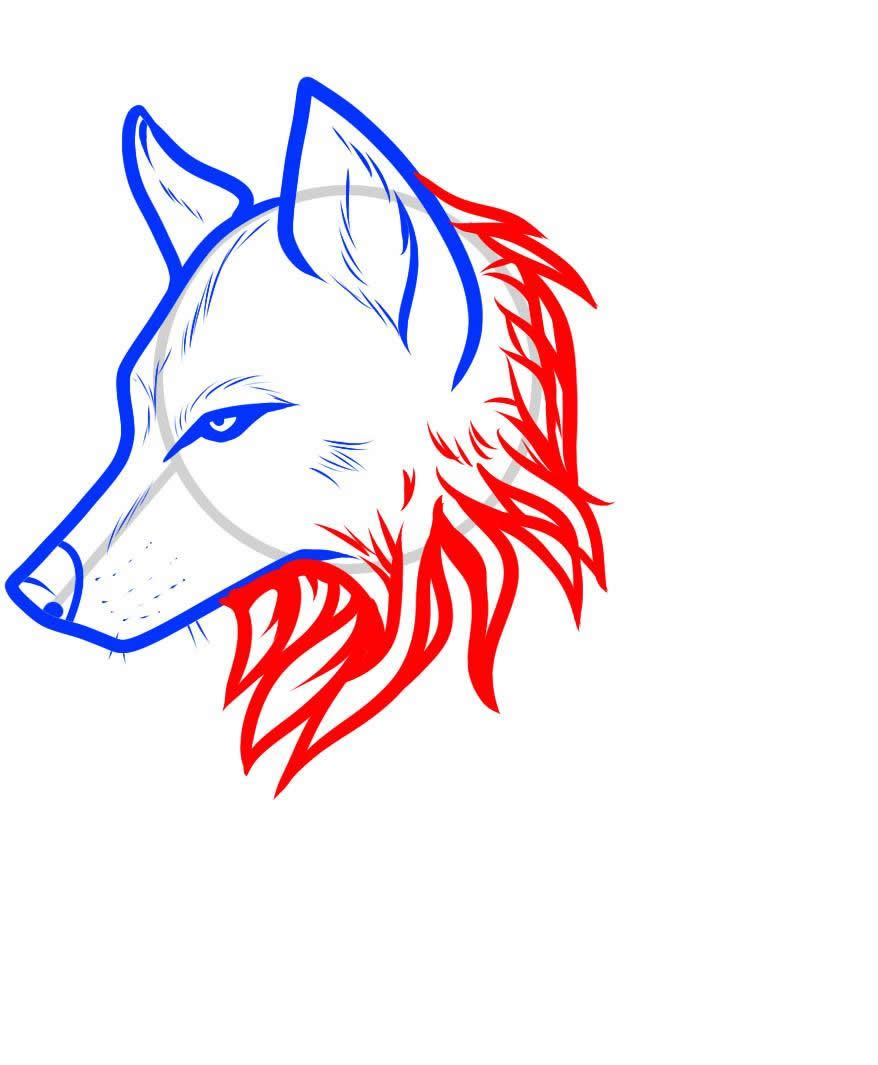 How To Draw A Wolf Dr Odd Wolf Head Drawing Drawings Wolf Drawing