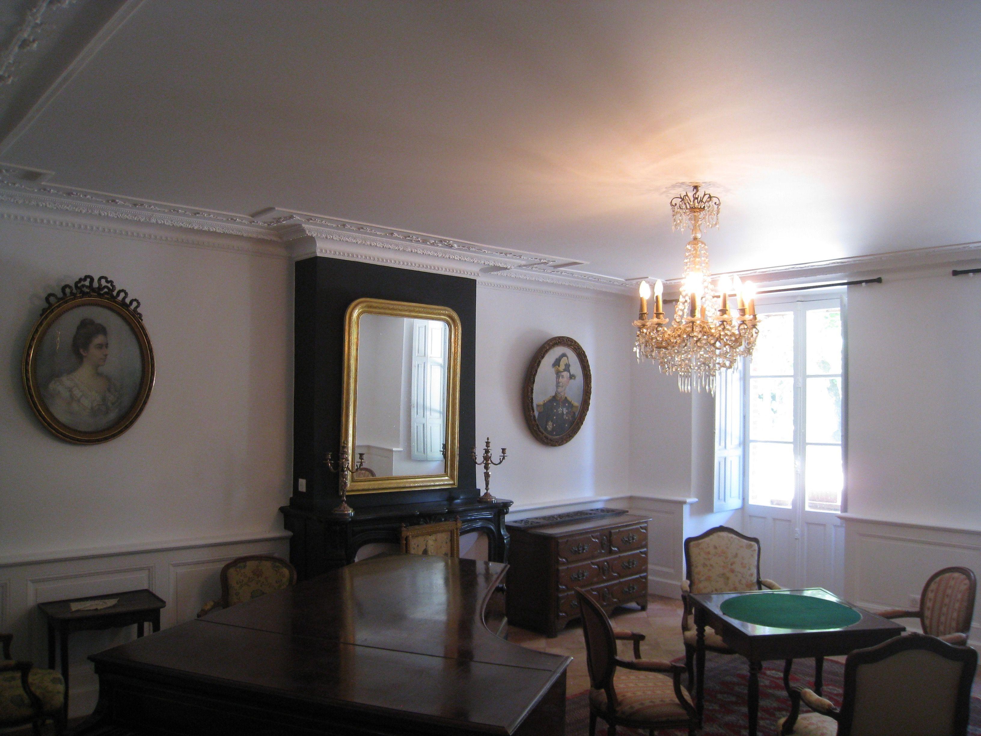 Rénovation D Un Salon, Plafond Tendu 31 Extenzo, Peinture, Panneaux  Décoratifs Bois Galerie De Photos