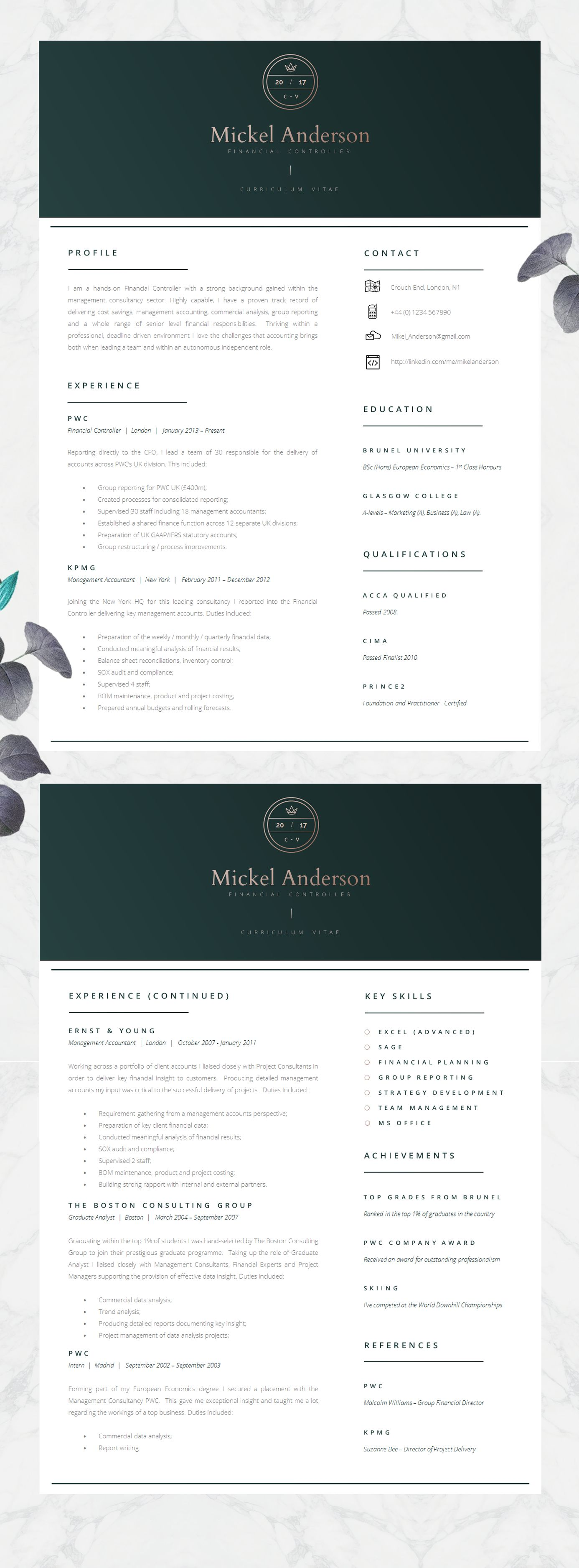 Professional Resume Template  Resume Design  Resume Design