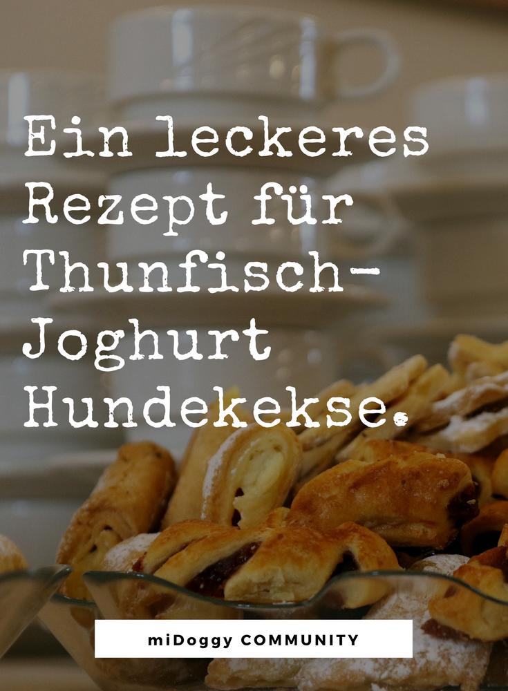Rezept Hundekekse Mit Thunfisch Und Joghurt Mit Bildern Hunde Kekse Rezept Hundekekse Hunde Ernahrung