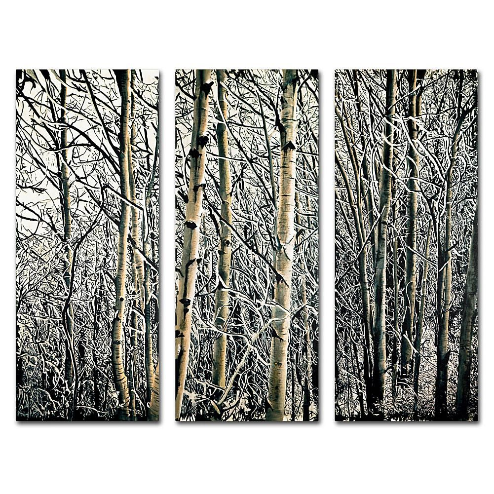 Roderick Stevens Aspen Winter Multi Panel Art Collection