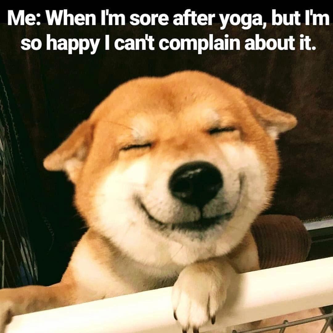 Yogspiration On Instagram Truuu Yoga Is Bae Yogamemes Yogameme Yogisofinstagram Yogainspiration Yogspir Yoga Funny Funny Yoga Memes Yoga Quotes Funny