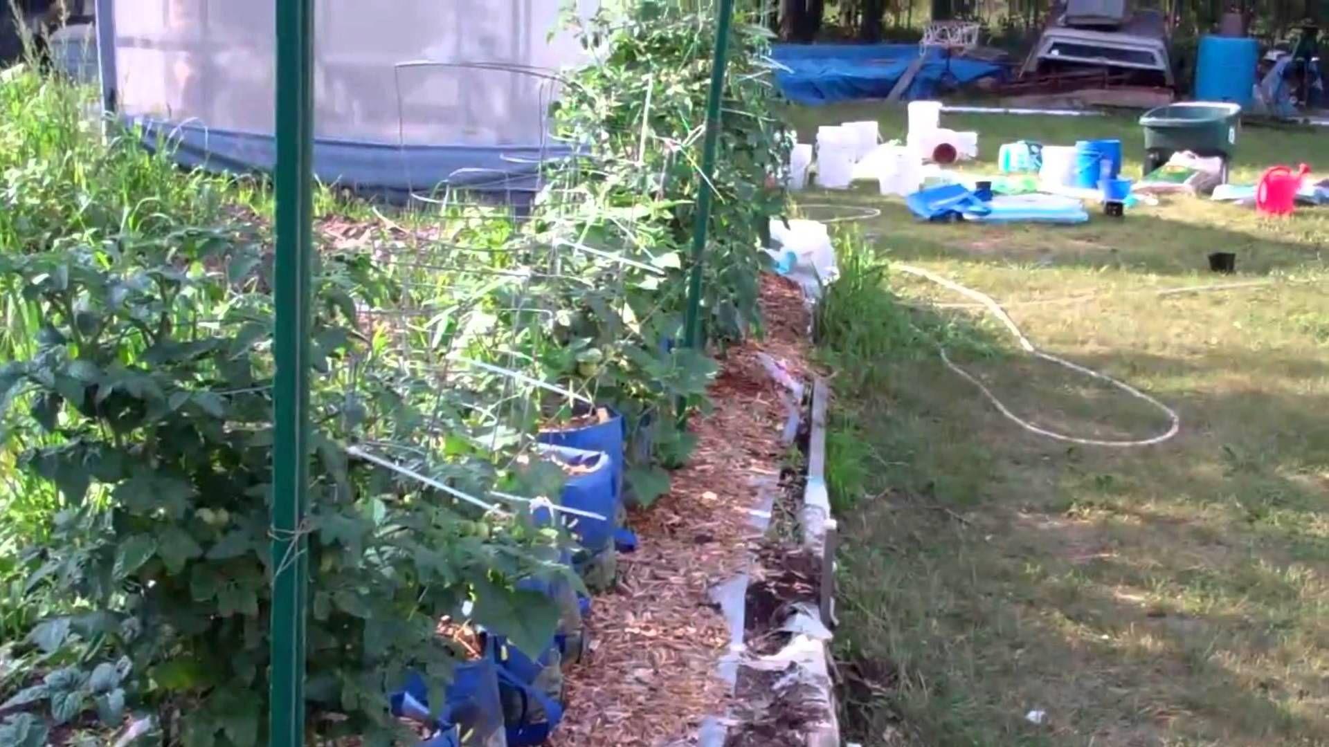 Time To Get The Underground Hybrid Rain Gutter Grow System Ready Bottle Garden Grow System Urban Garden