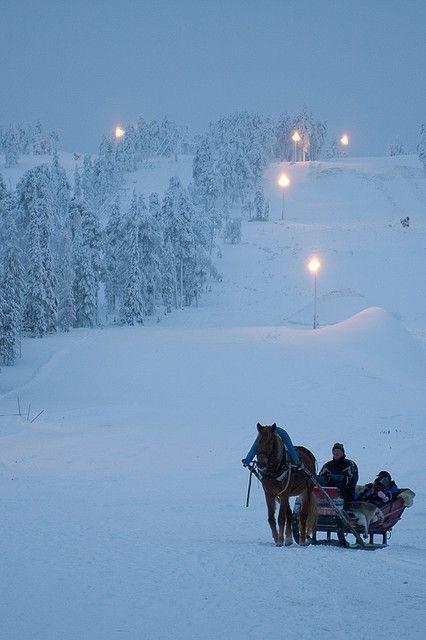 Horse Sled / Flickr - Photo Sharing!