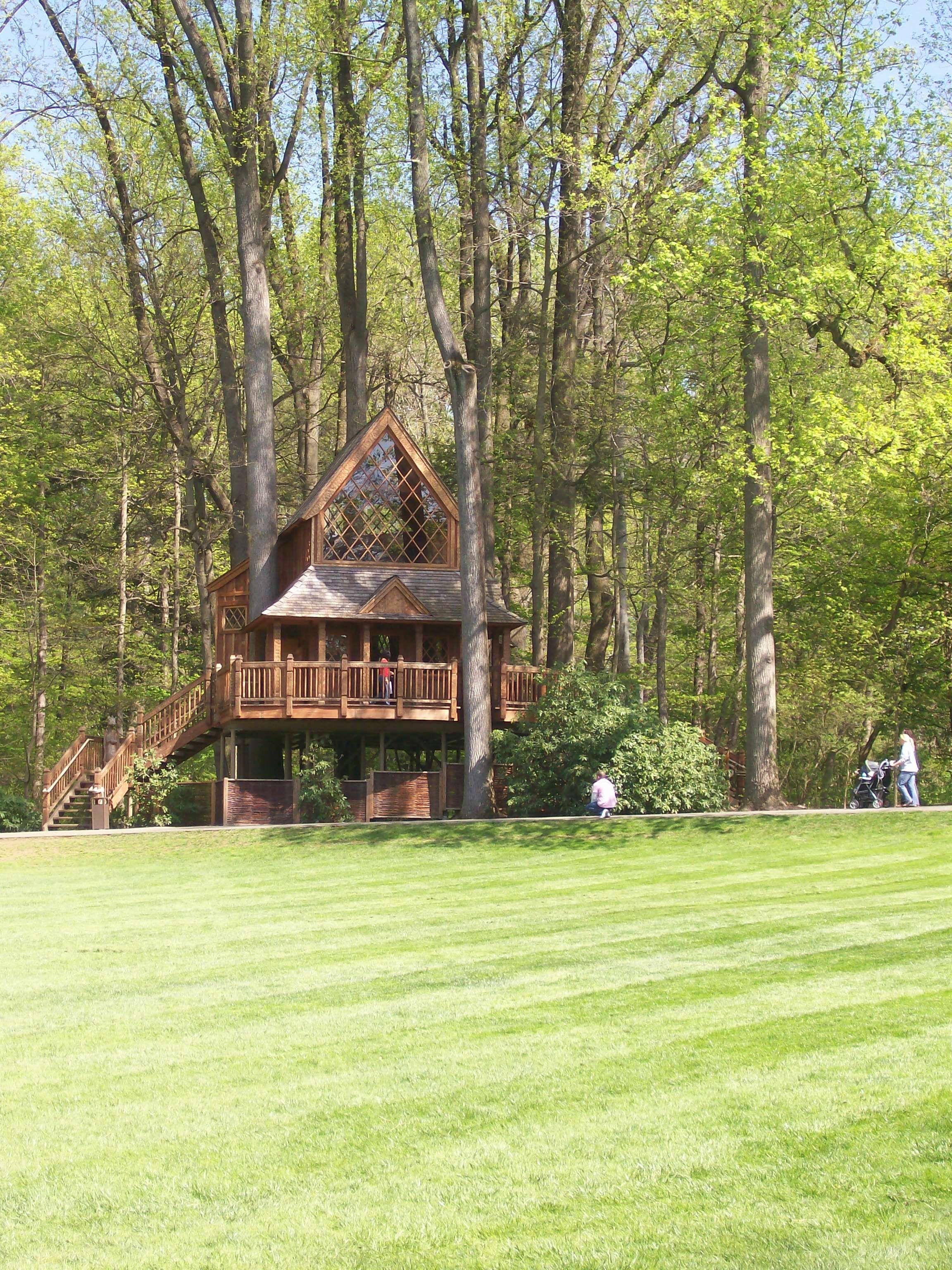 really cool tree housewish i had a big backyard