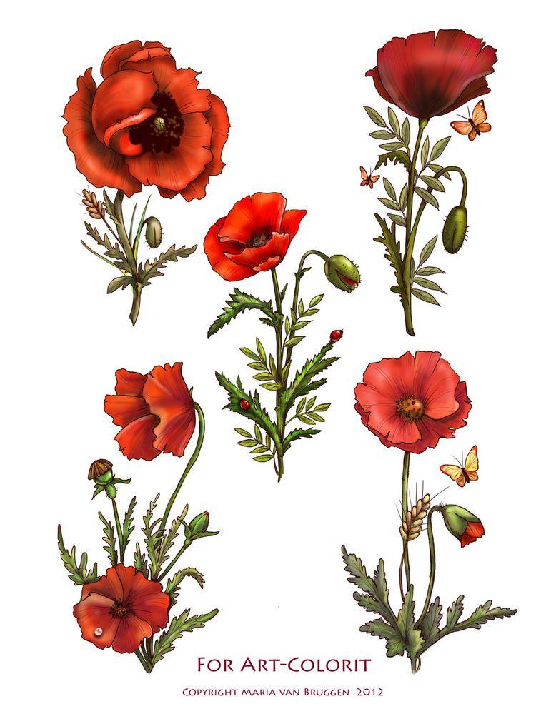 Цветы, ...для декупажа) . Обсуждение на LiveInternet ...