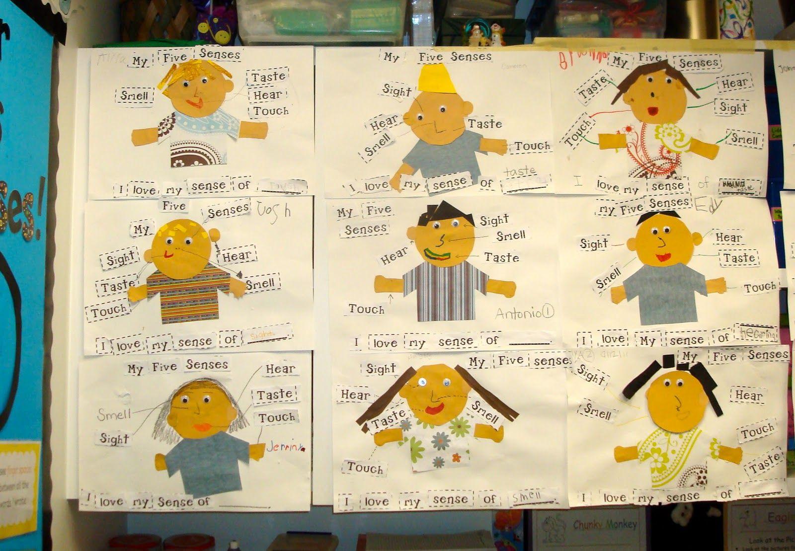 Individual 5 Senses Chart The Kiddos Make As A Follow Up