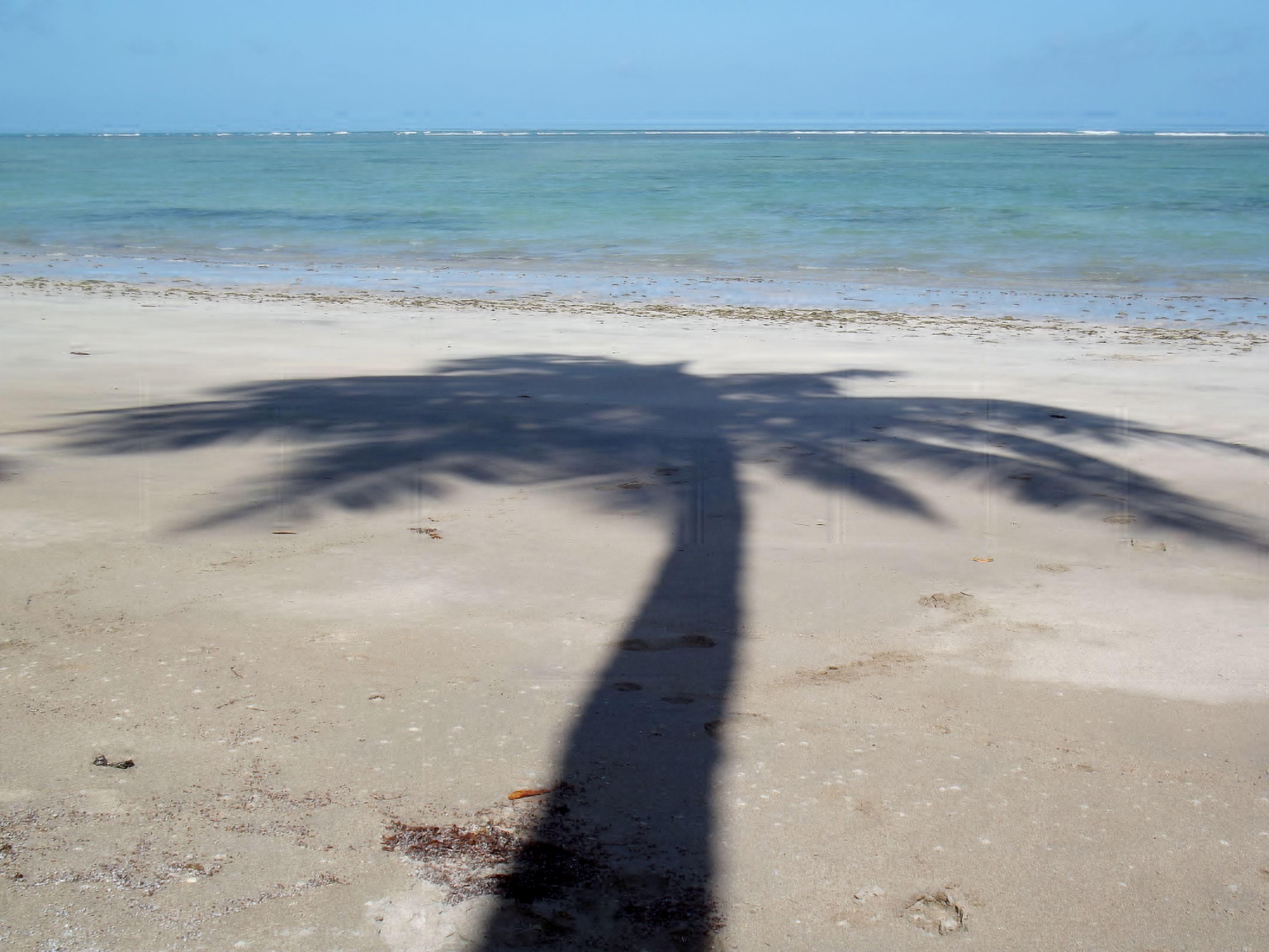 Litoral do Brasil. Alagoas - Dos Mares, o Melhor!