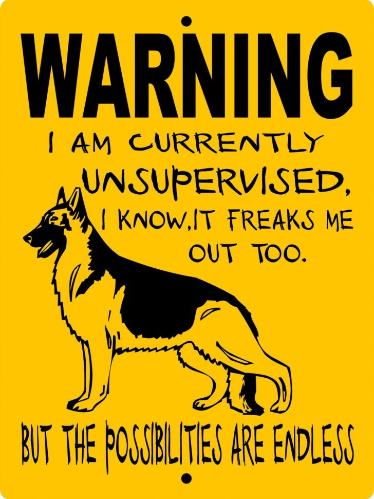 Funny Beware Of Dog Sign Google Sogning German Shepherd Dogs