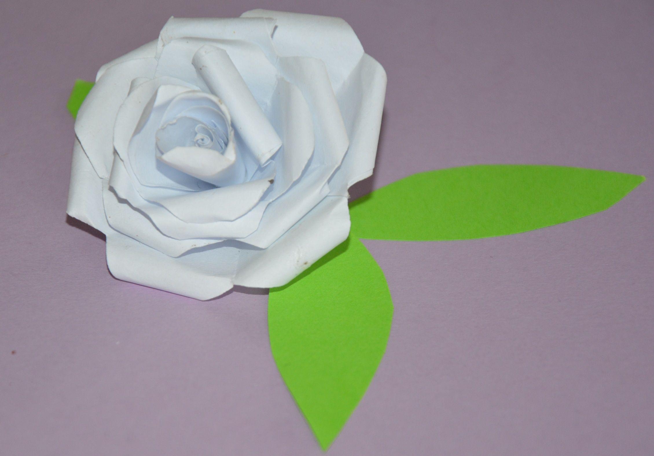 Kwiaty Z Papieru Lub Bibuly Instrukcja Mama W Domu