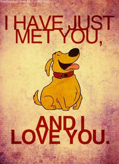 Up, Dug, cute dog   Read More Funny:    http://wdb.es/?utm_campaign=wdb.esutm_medium=pinterestutm_source=pinterst-descriptionutm_content=utm_term=