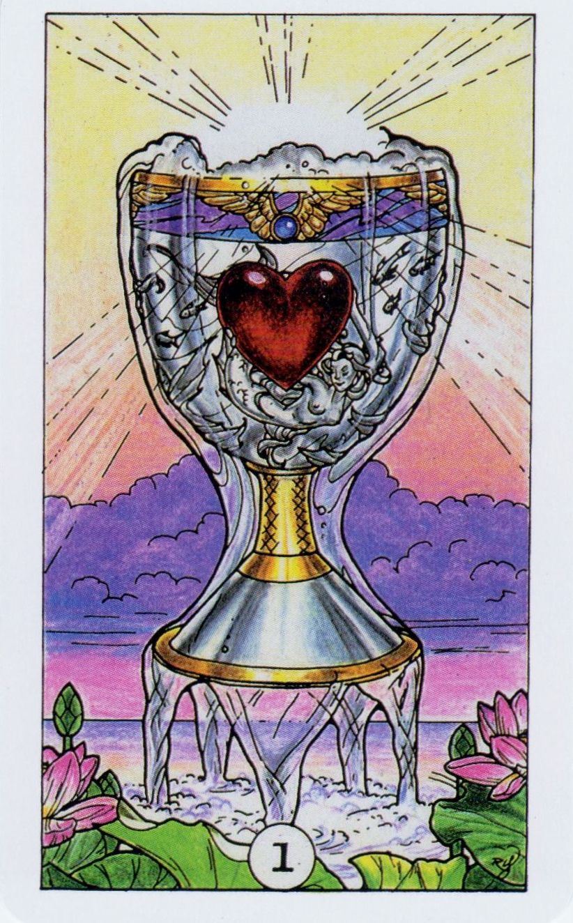 Card of the day ace of cups from robin wood tarot
