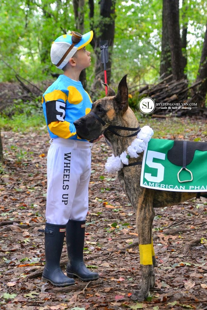 Jockey And Race Horse Costume Horse Halloween Costumes Dog
