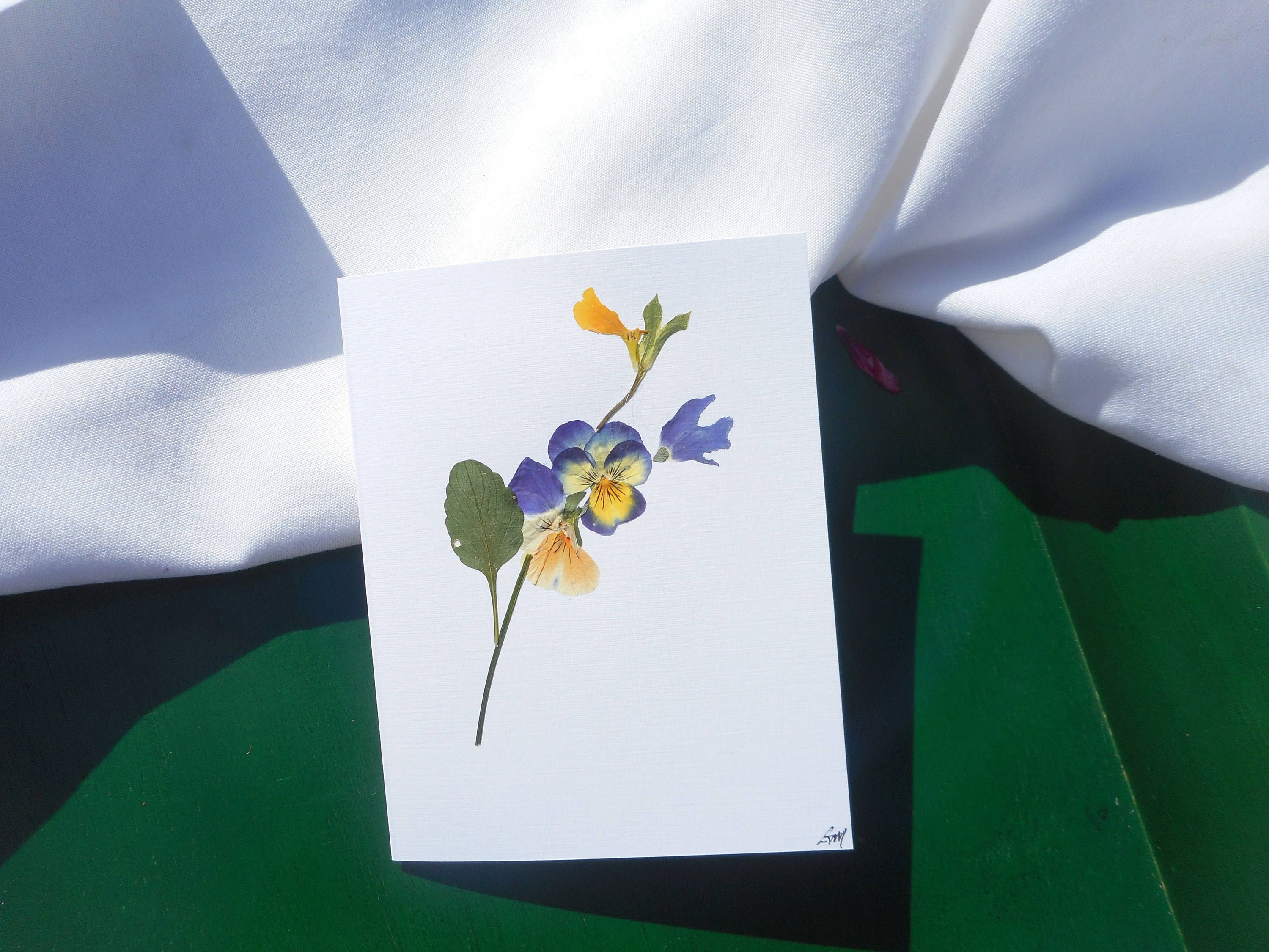 Send a greeting card with real pressed flowers on the outside to send a greeting card with real pressed flowers on the outside to someone special today kristyandbryce Gallery