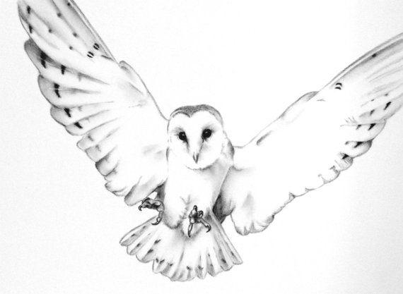 Barn Owl Flying Clip Art Black and White