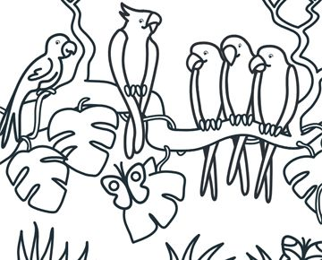 Kleurplaat Papegaaien Jungle Pinterest Papegaaien