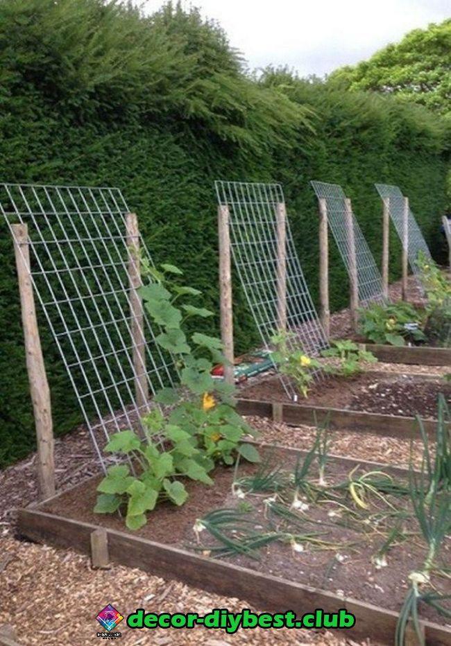 Garten   Garten #gartenlandschaftsbau