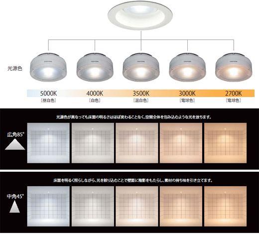 Ledライトエンジンダウンライトの光色と配光のイメージ ダウンライト Ledライト 屋外照明